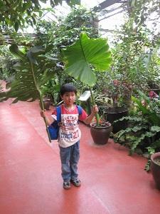 植物園にて1